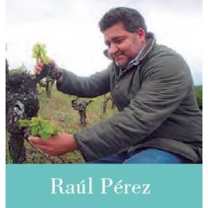 Coloquio con Bodegueros: Raúl Pérez