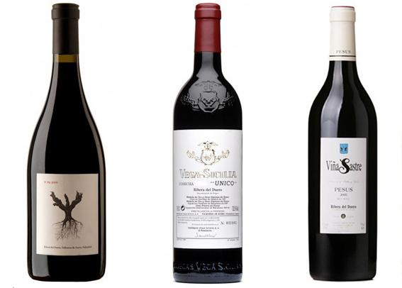 vinos mas caros espana