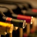 Vinos chilenos: nos vamos a vendimiar?