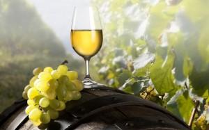 Vino-blanco-periodiconmexcom-800x500_c