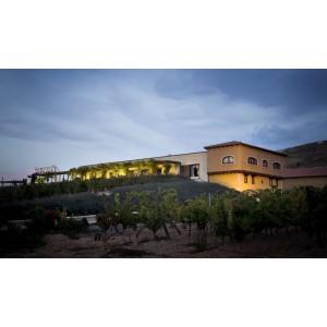 Masterclass: Conoce la Ciencia del Vino con Valdubón