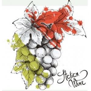 Curso de vinos italianos
