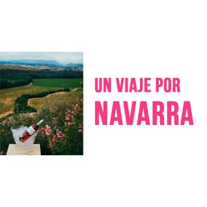 Un viaje por Navarra