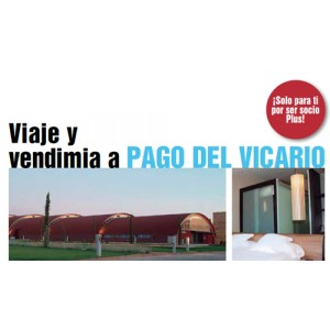 Viaje y vendimia Pago del Vicario