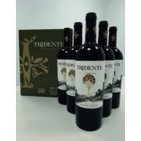 6/BT TRIDENTE TEMPRANILLO 2017