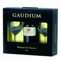 GAUDIUM 2012 + 2 COPAS